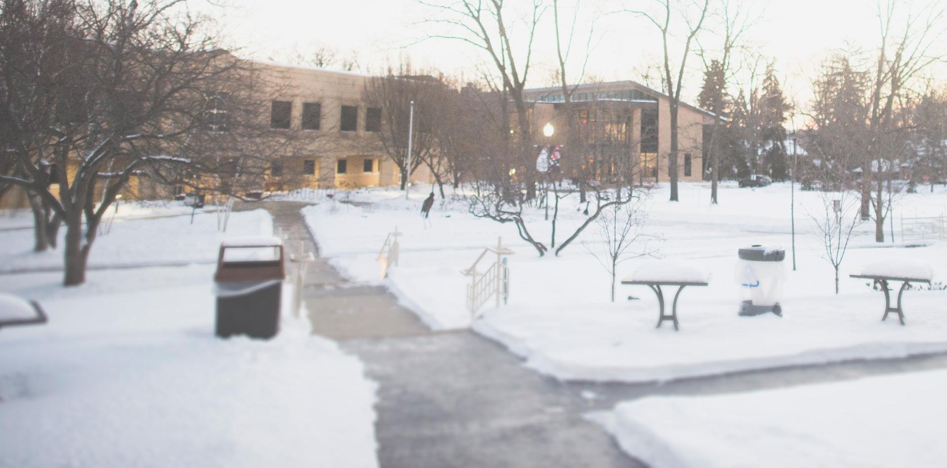Library-Stream-Winter