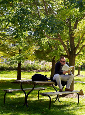 Student reading outdoors.