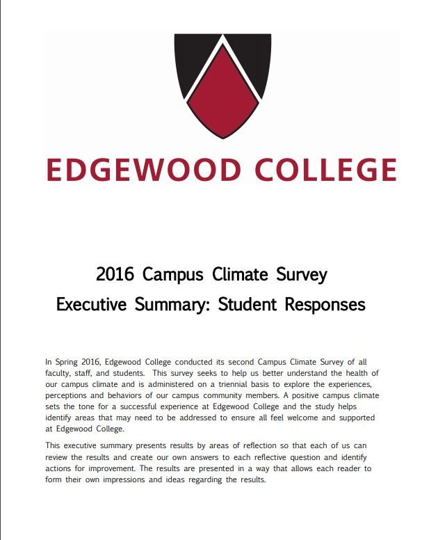 Cover of 2016 Exe Summary Student responses